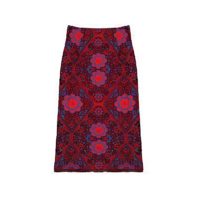 embroidery detail lace skirt multi