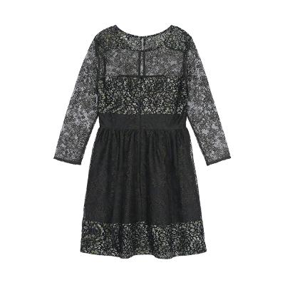 shoulder  and sleeve see through lace dress black