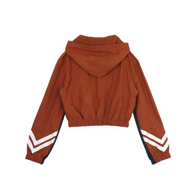 windbreak hoodie brown1